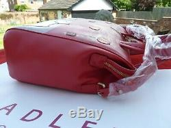 Radley Year Of The Dog Signature / Picture Handbag And Coin Purse BNWT Freepost